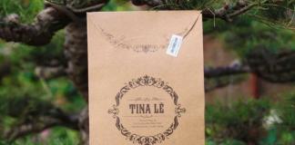 Review mat na ngu hoa Tina Le