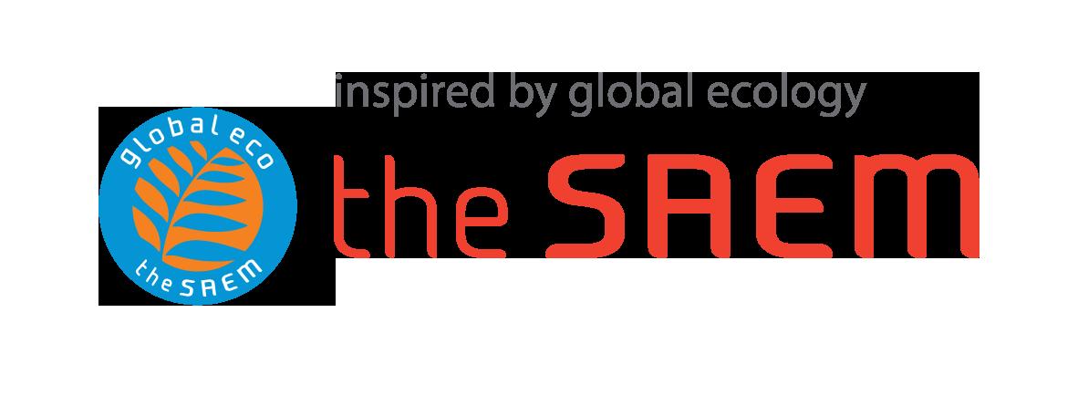 Logo the saem